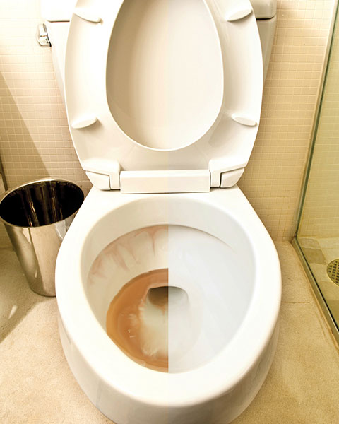 Iron Out 174 Rust Stain Removers Automatic Toilet Bowl
